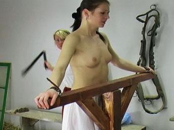 trailerfhg Spanking  Video Tgp   Barn Whipping