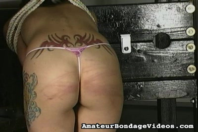 trailerfhg Dsm Locking Collars Public   Yankees Suck