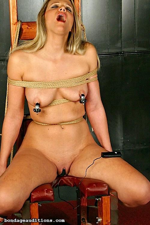 bondage 2003 phpbb group