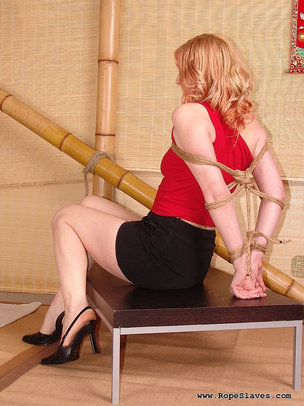 04 296.80 Dsm   Olga Bondage Rope Porn
