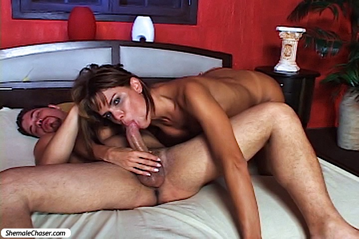 Hot gay stud sex
